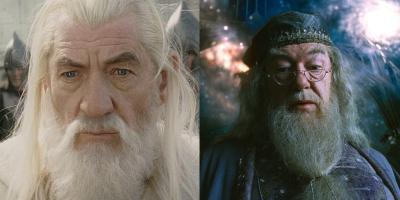 Fans comparan a Gandalf con Dumbledore y deciden quién ganaría una pelea