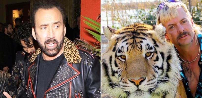 Tiger King: Amazon ha abandonado la serie que iba a protagonizar Nicolas Cage