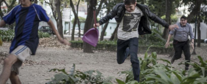 Sopladora de Hojas Trailer