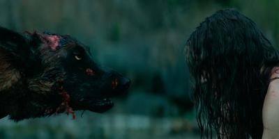 Ve el nuevo trailer del remake de Cabin Fever, un clásico del horror