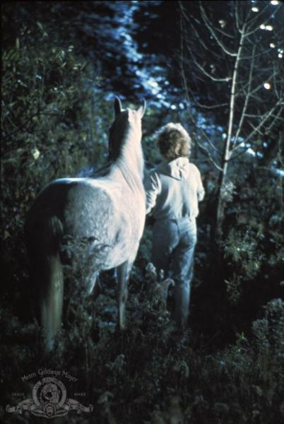 © 1977 Metro-Goldwyn-Mayer Studios Inc. All Rights Reserved.