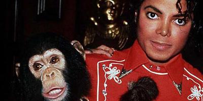 Harán biopic de Bubbles, chimpancé mascota de Michael Jackson