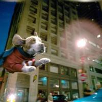 Supercán (2007)